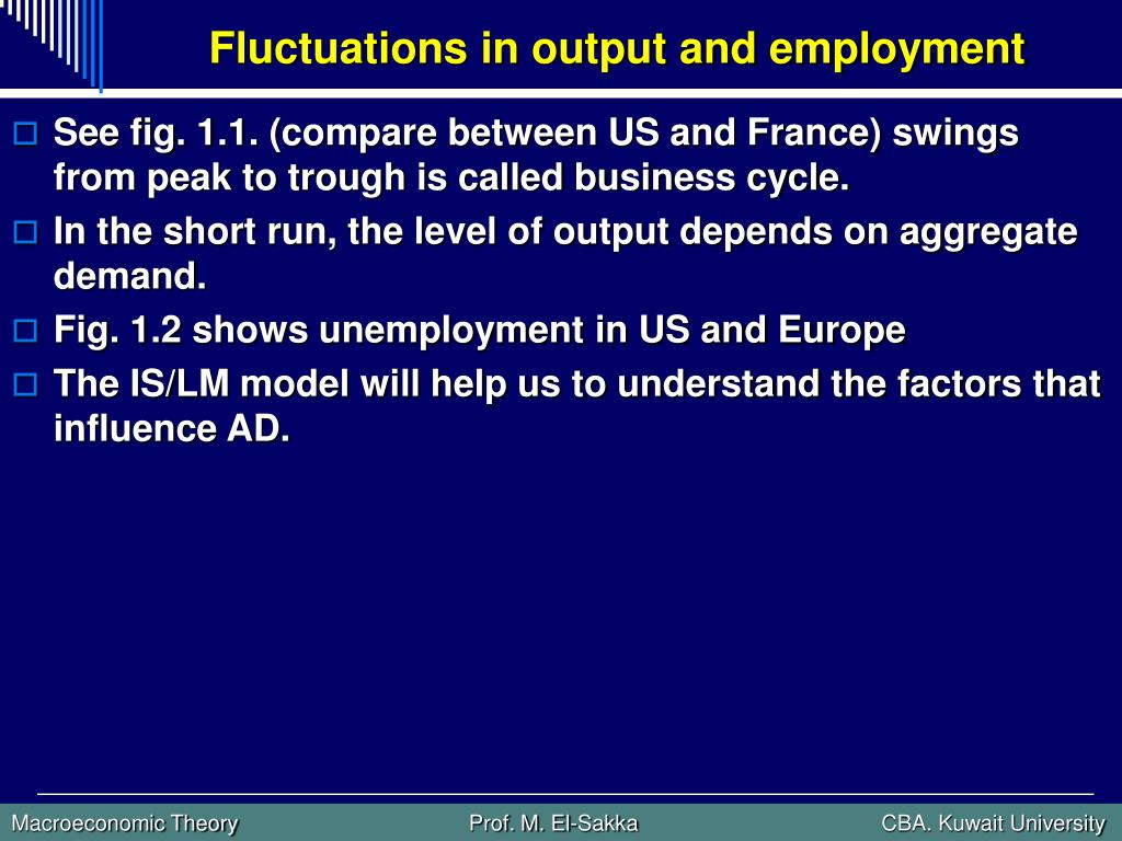 Fluctuations in output and employment