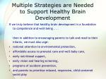 multiple strategies are needed to support healthy brain development