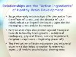 relationships are the active ingredients of healthy brain development