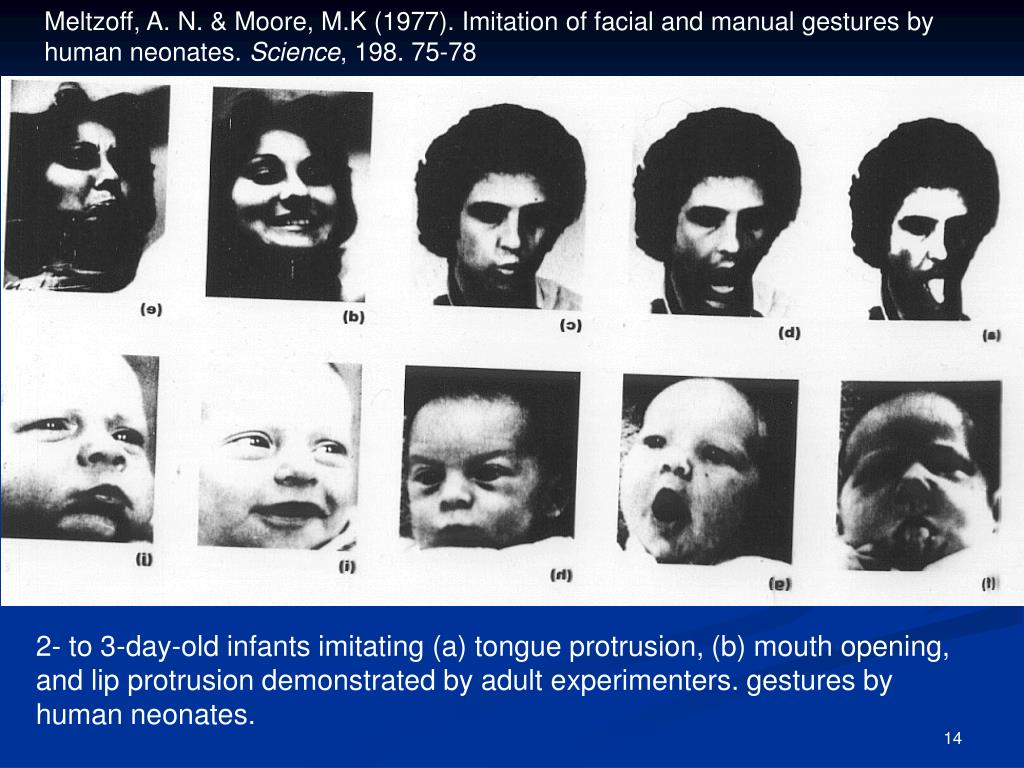 Meltzoff, A. N. & Moore, M.K (1977). Imitation of facial and manual gestures by human neonates.