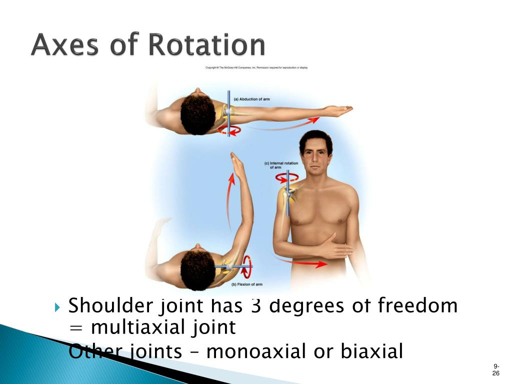 PPT - Definition of Joint PowerPoint Presentation, free ...