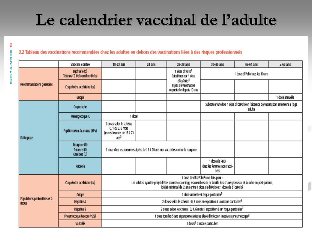 Le calendrier vaccinal de l'adulte