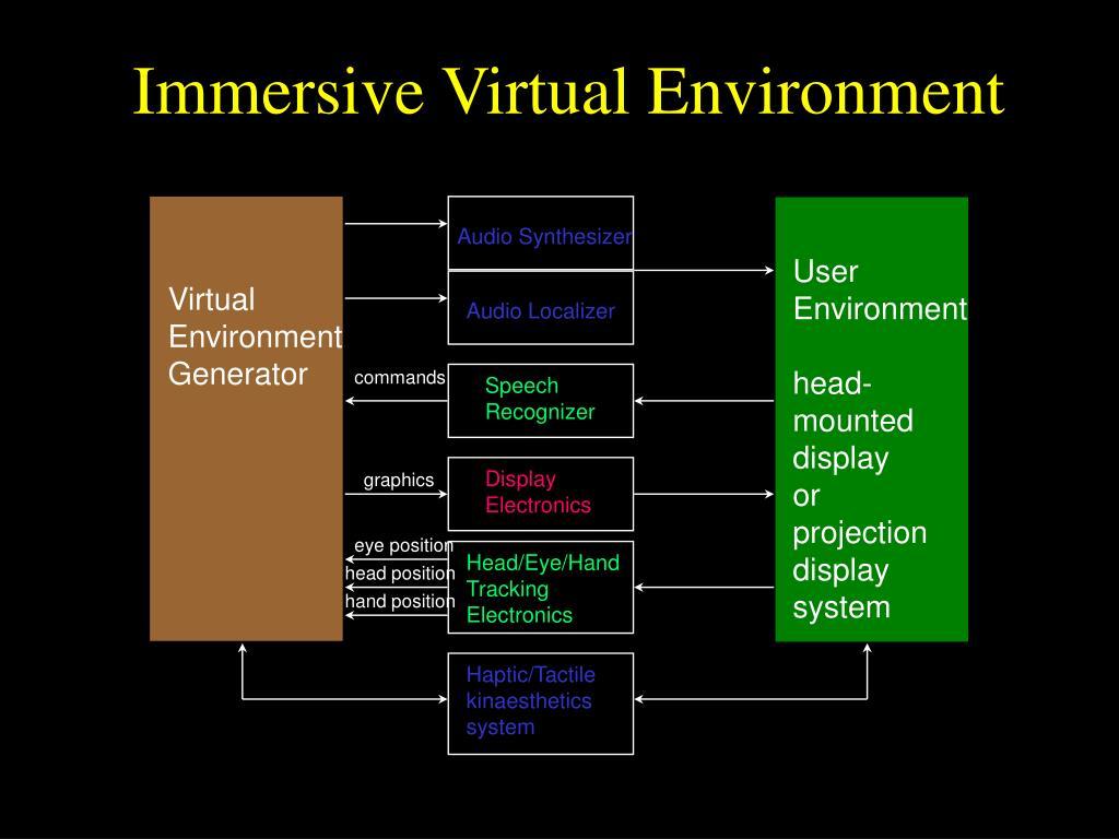 Immersive Virtual Environment