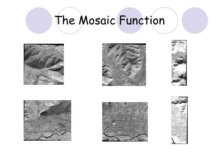 The mosaic function3