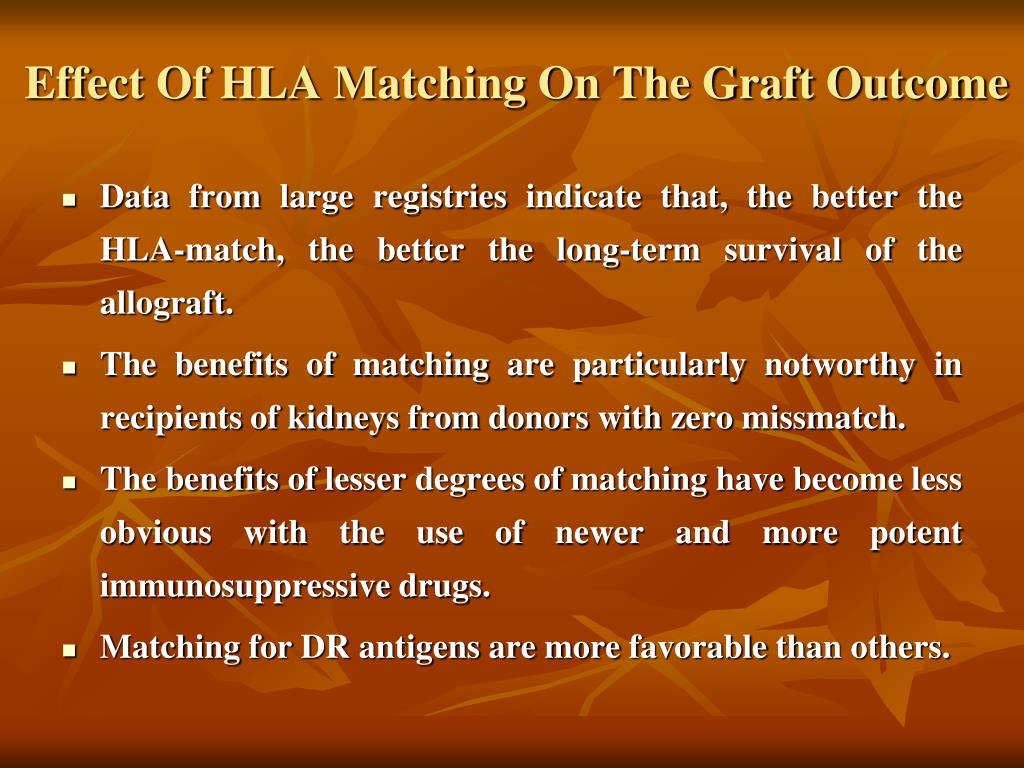Effect Of HLA Matching On The Graft Outcome