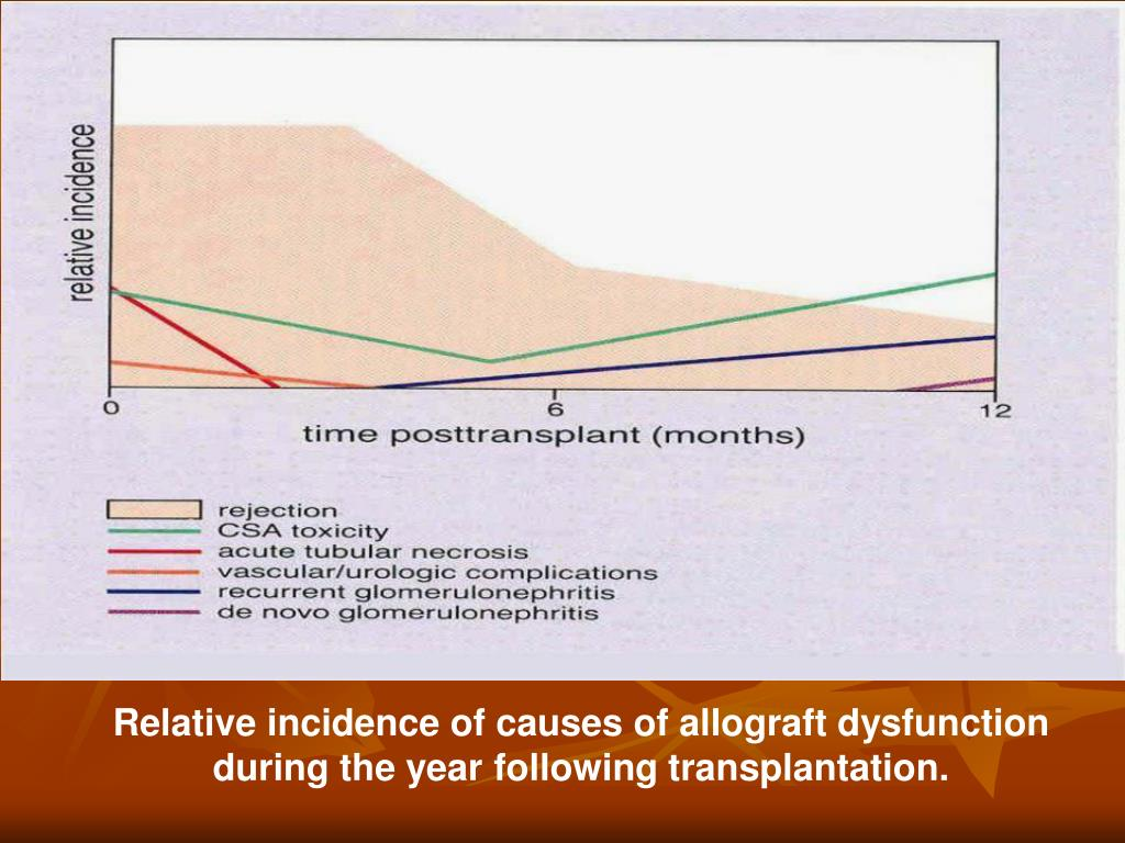 Relative incidence of causes of allograft dysfunction during the year following transplantation.