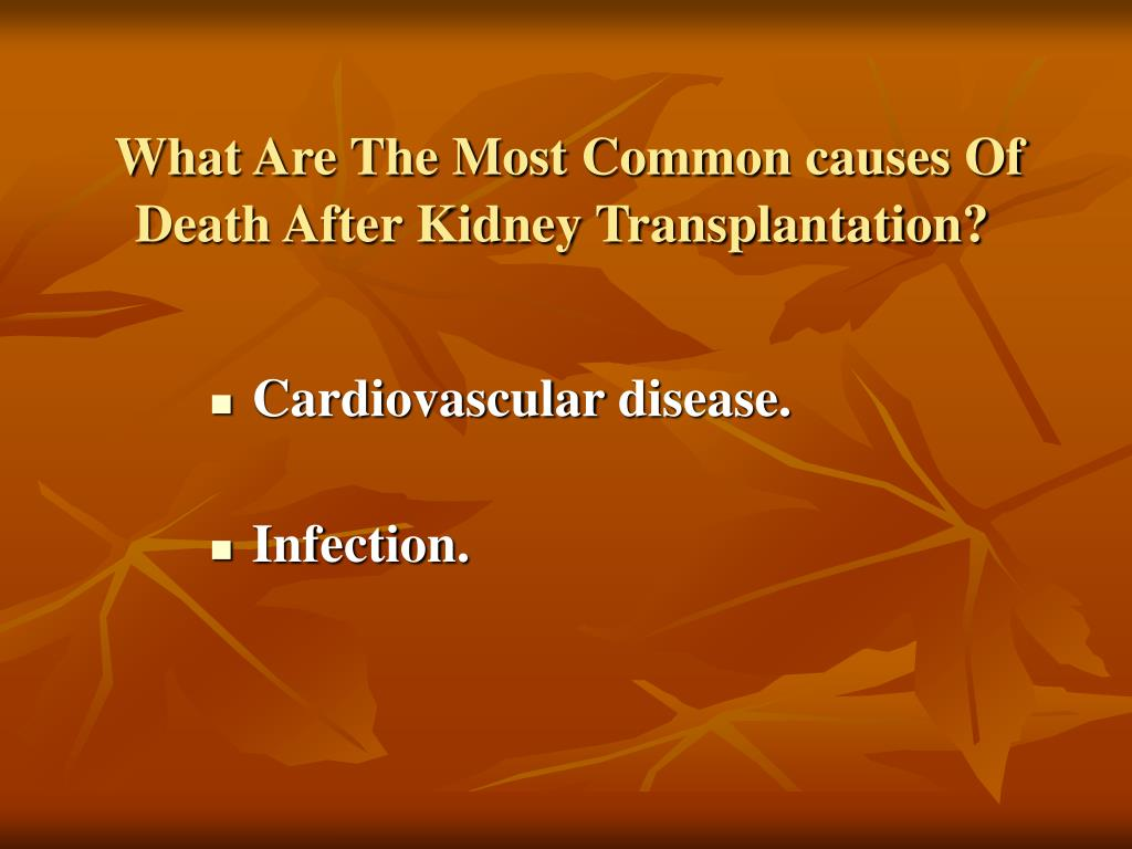 What Are The Most Common causes Of Death After Kidney Transplantation?