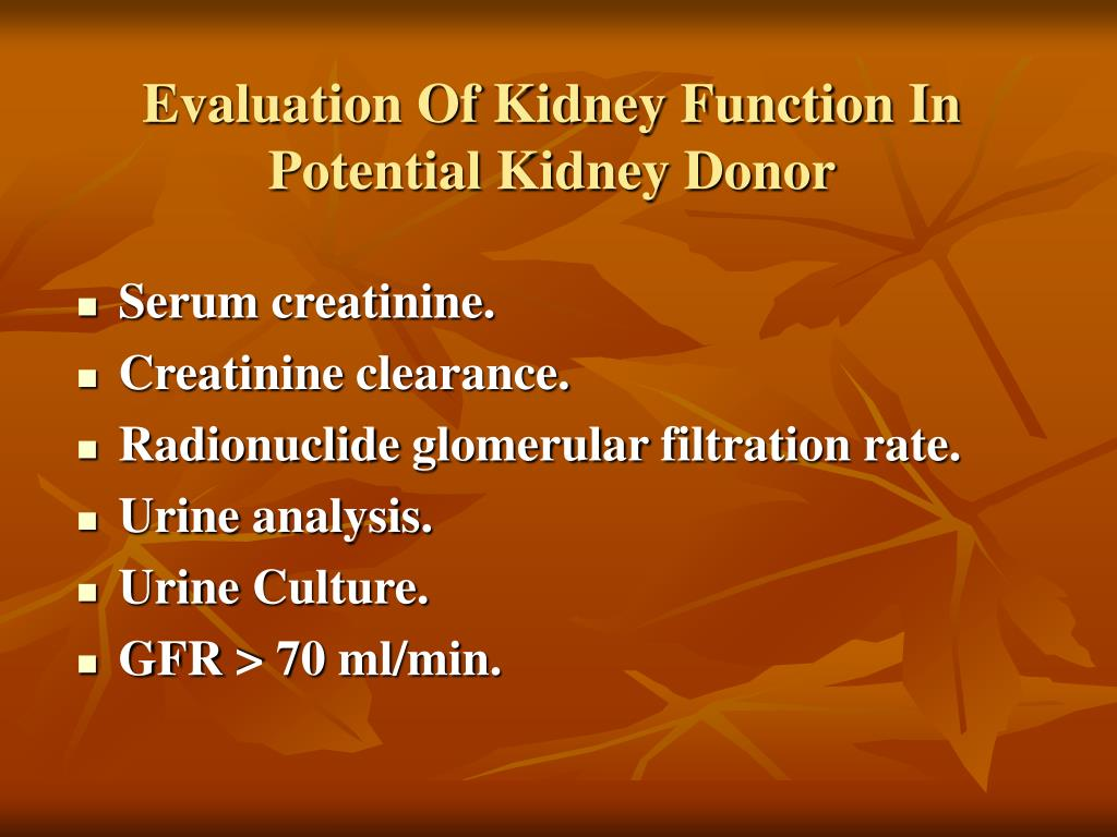 Evaluation Of Kidney Function In Potential Kidney Donor