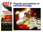 popular perceptions of nanotechnology10