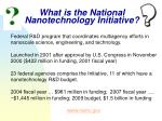 what is the national nanotechnology initiative