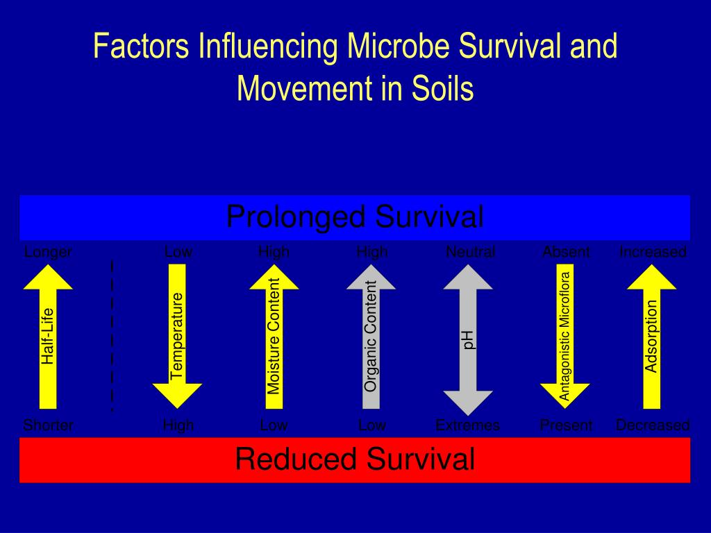 Factors Influencing Microbe Survival and Movement in Soils