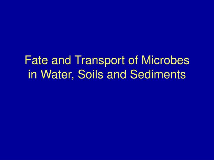 Fate and transport of microbes in water soils and sediments