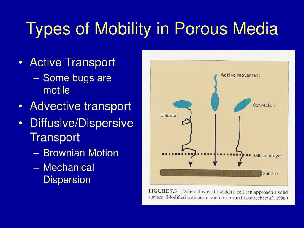 Types of Mobility in Porous Media