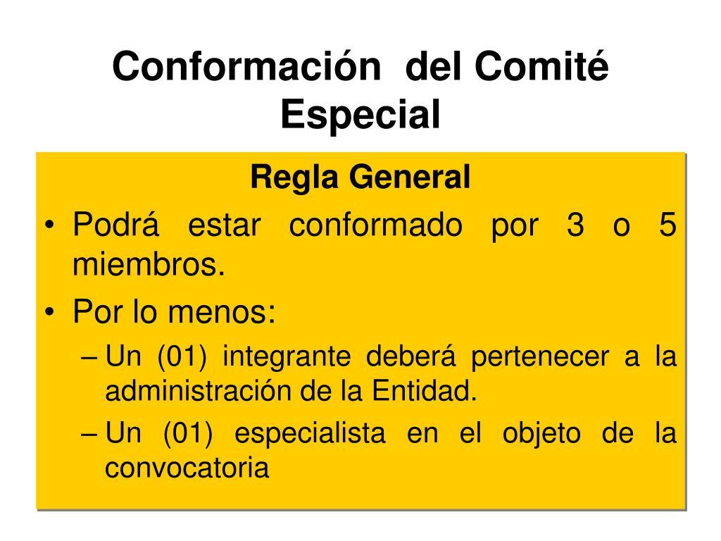 Conformación  del Comité Especial