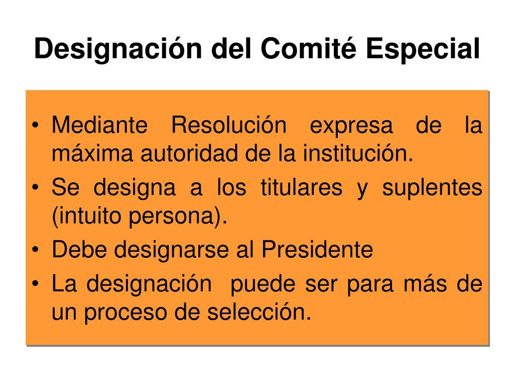 Designación del Comité Especial