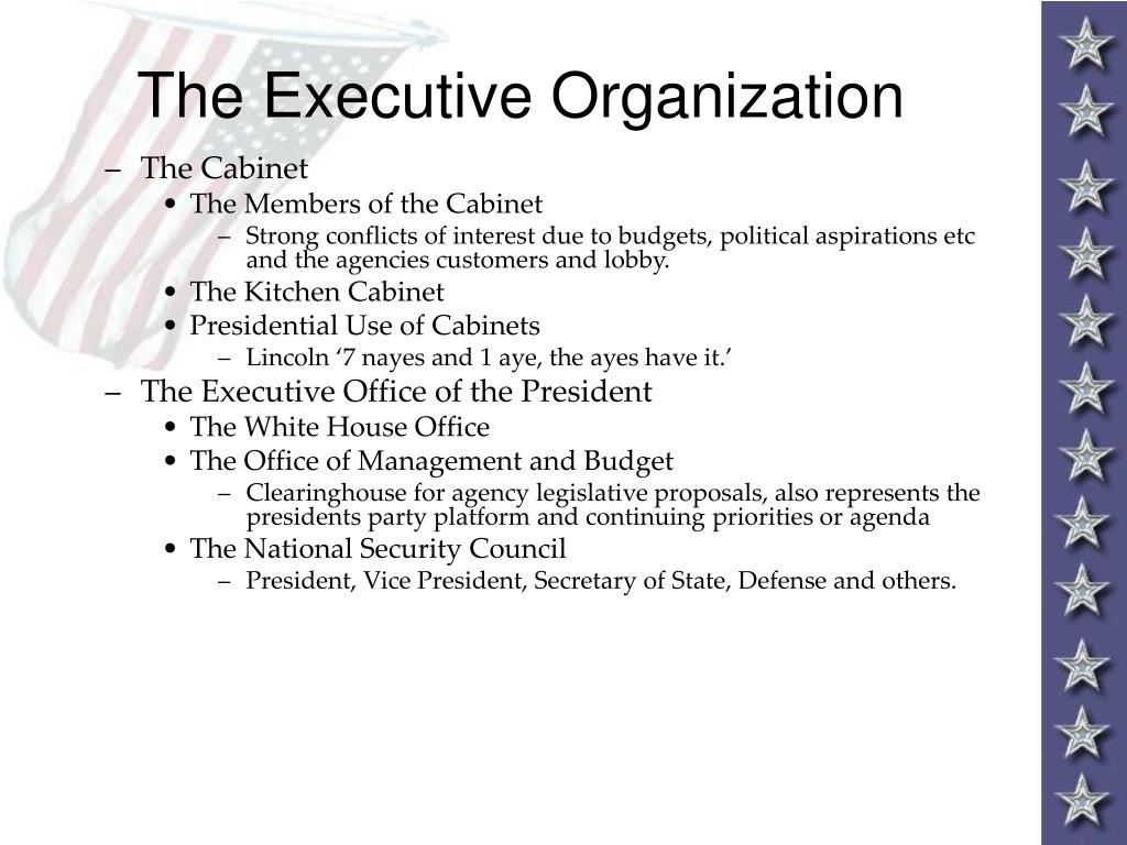 The Executive Organization