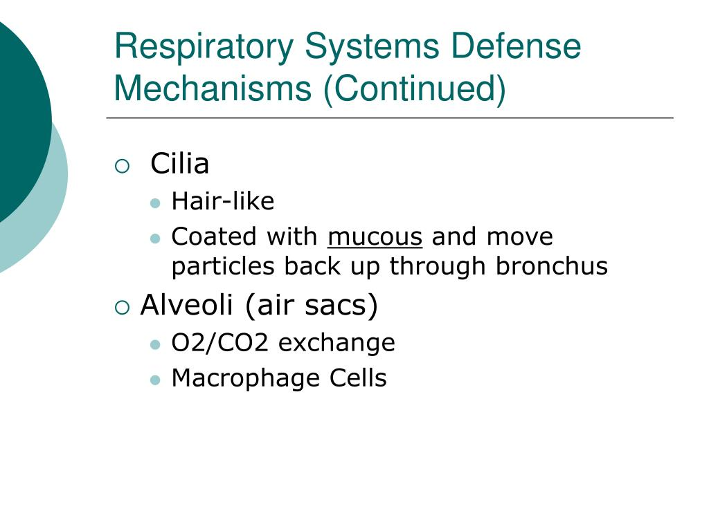 Respiratory Systems Defense Mechanisms (Continued)