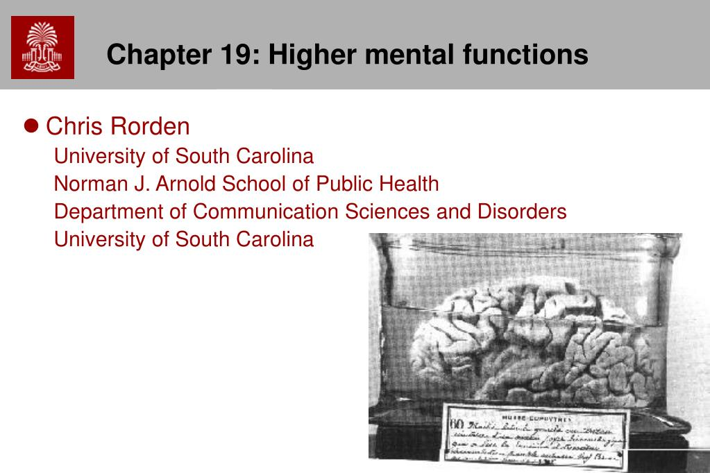 chapter 19 higher mental functions l.