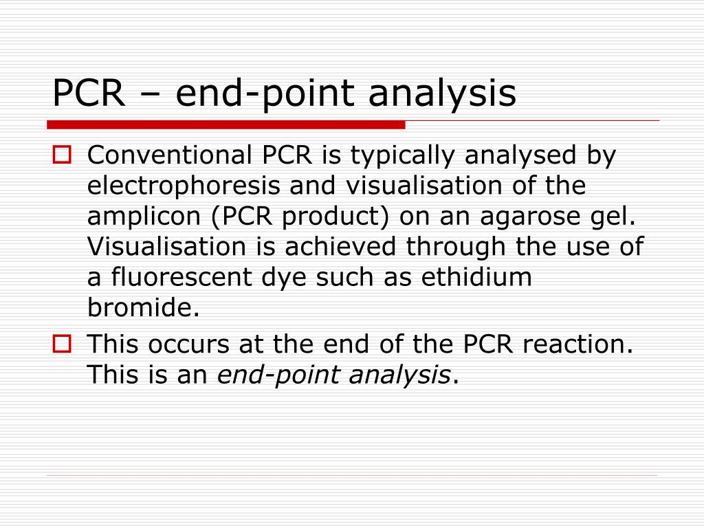 PCR – end-point analysis