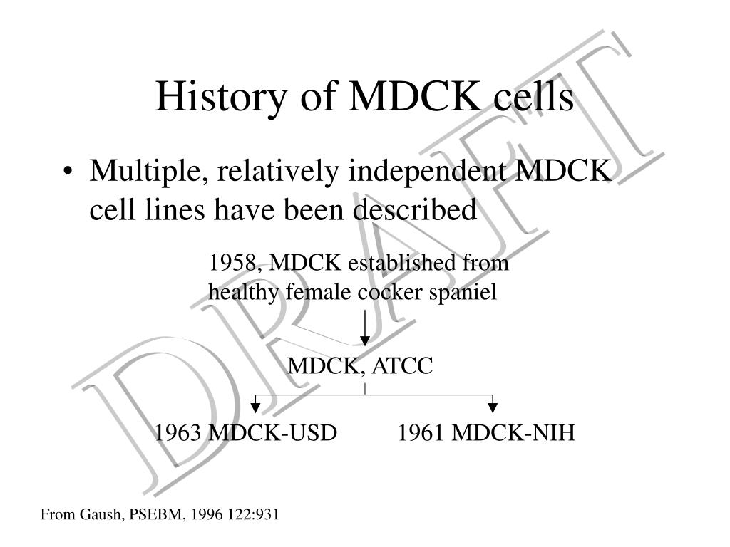 History of MDCK cells