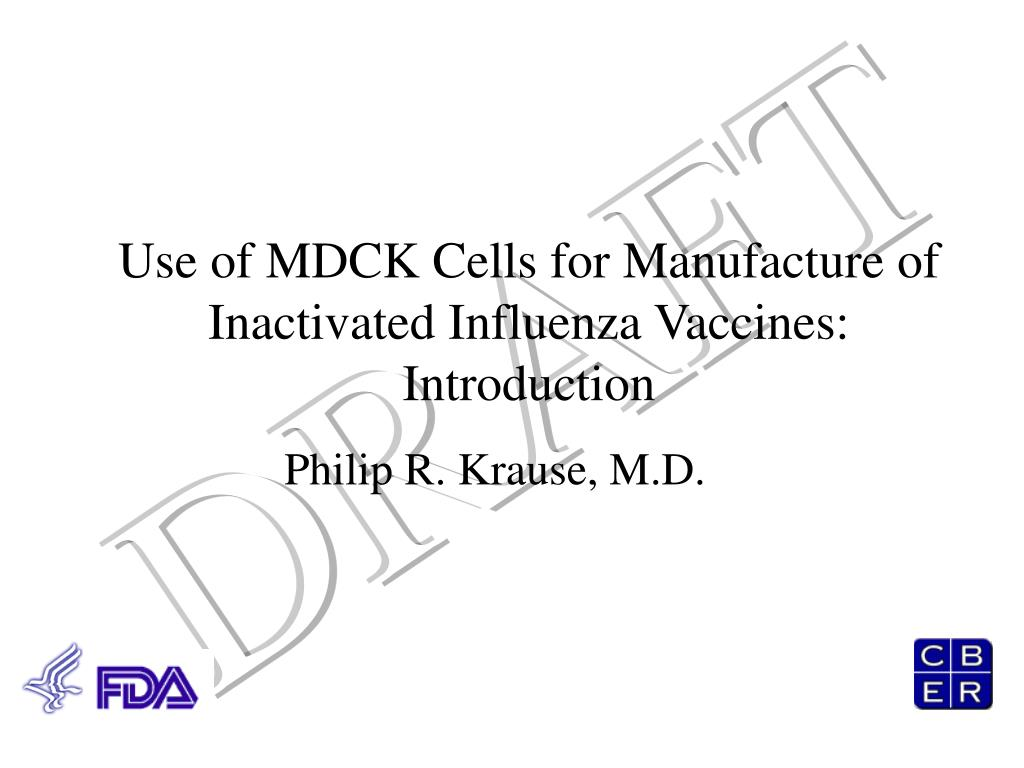 Use of MDCK Cells for Manufacture of Inactivated Influenza Vaccines: