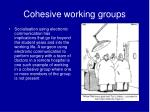 cohesive working groups