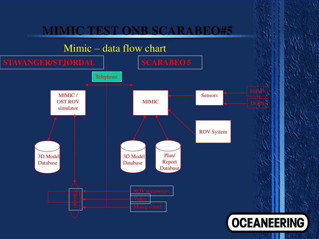 MIMIC TEST ONB SCARABEO#5