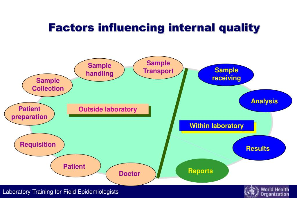 Factors influencing internal quality