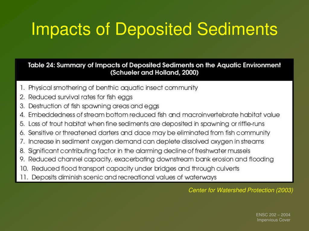 Impacts of Deposited Sediments
