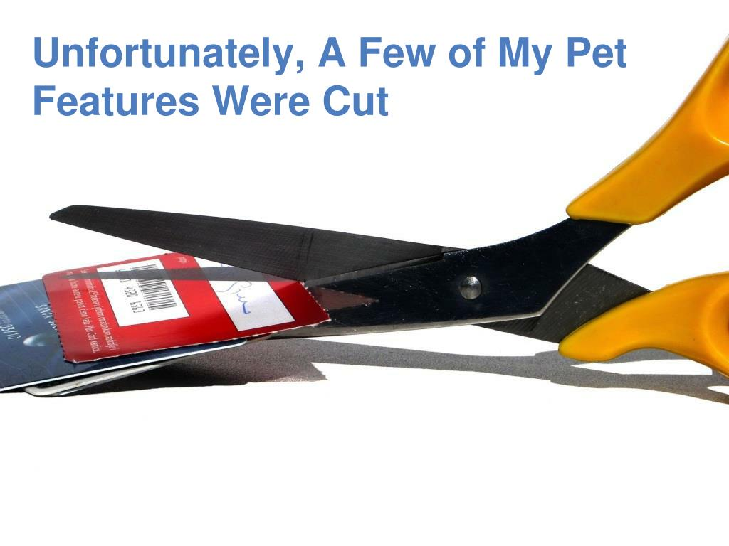 Unfortunately, A Few of My Pet Features Were Cut