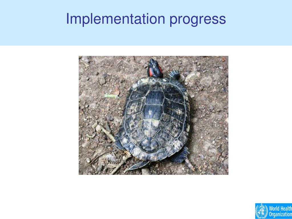 Implementation progress