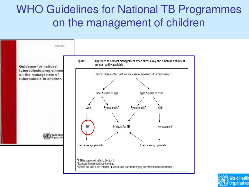 WHO Guidelines for National TB Programmes