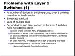 problems with layer 2 switches 1