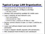 typical large lan organization