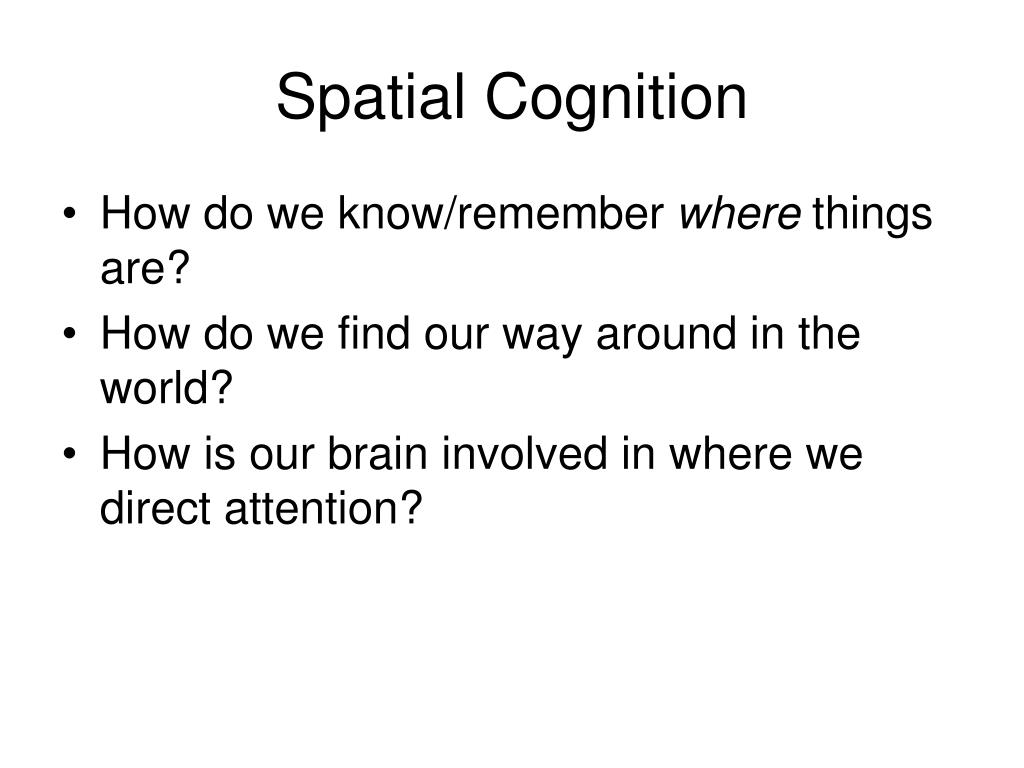 Spatial Cognition