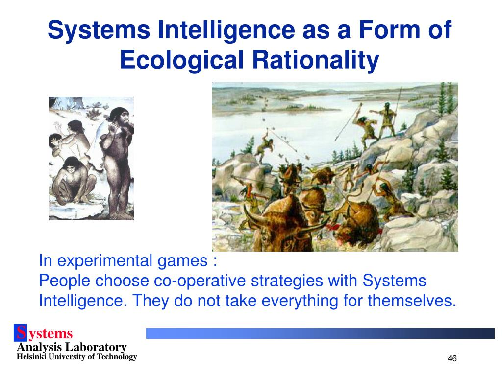 Systems Intelligence as a Form of Ecological Rationality