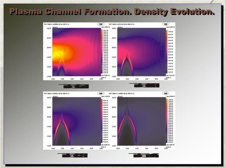 Plasma Channel Formation. Density Evolution.