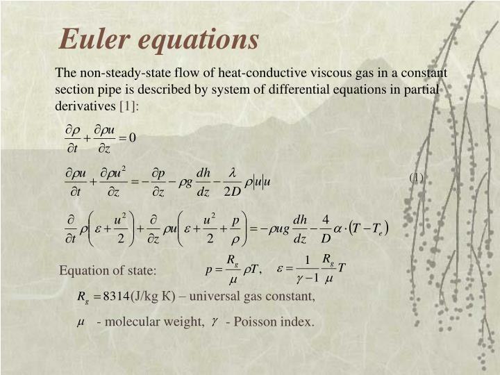 Euler equations