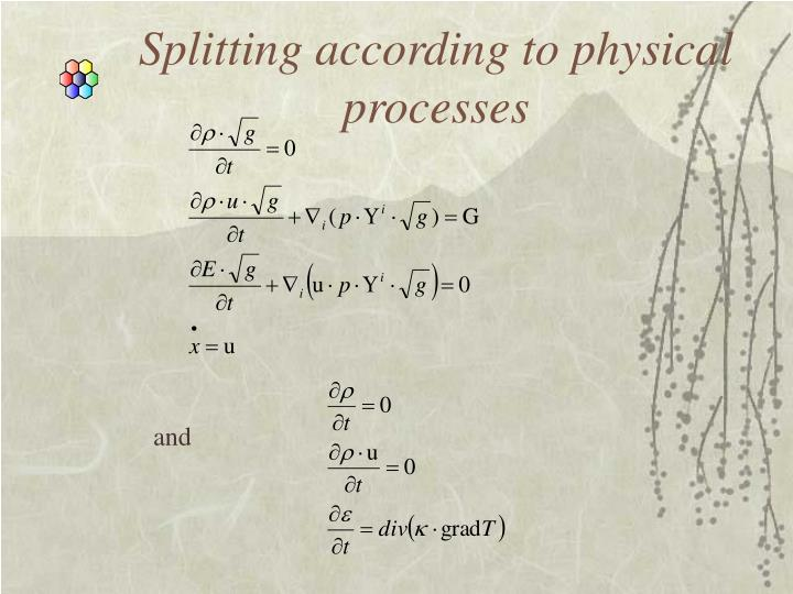 Splitting according to physical processes