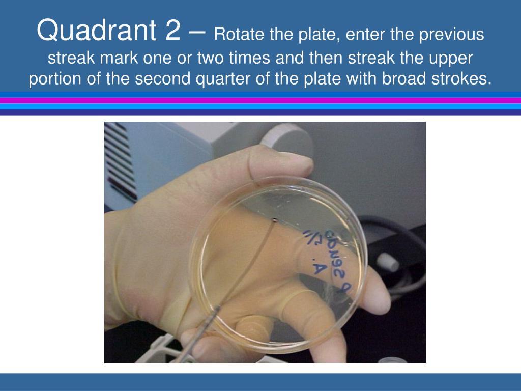 Quadrant 2 –