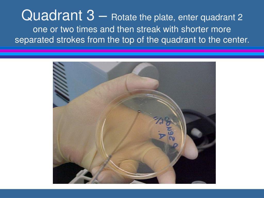Quadrant 3 –