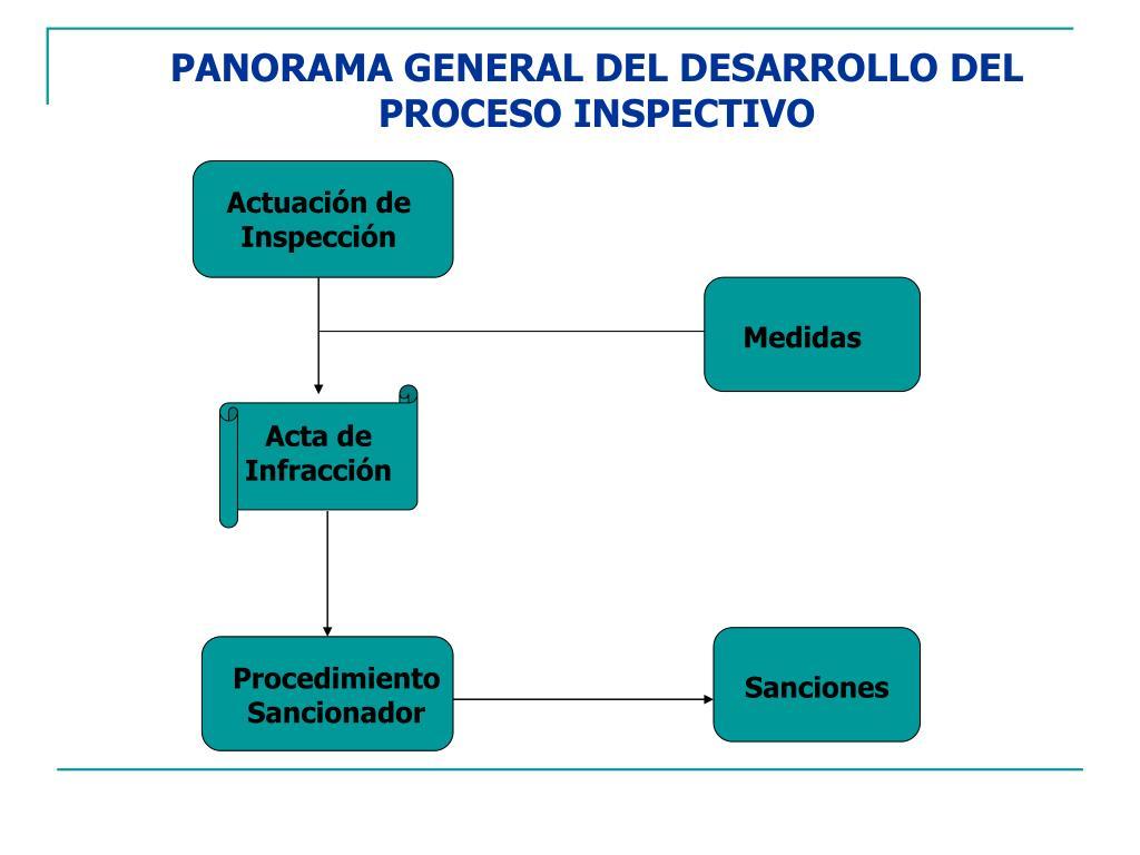 PANORAMA GENERAL DEL DESARROLLO DEL PROCESO INSPECTIVO