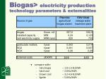 biogas electricity production technology parameters externalities