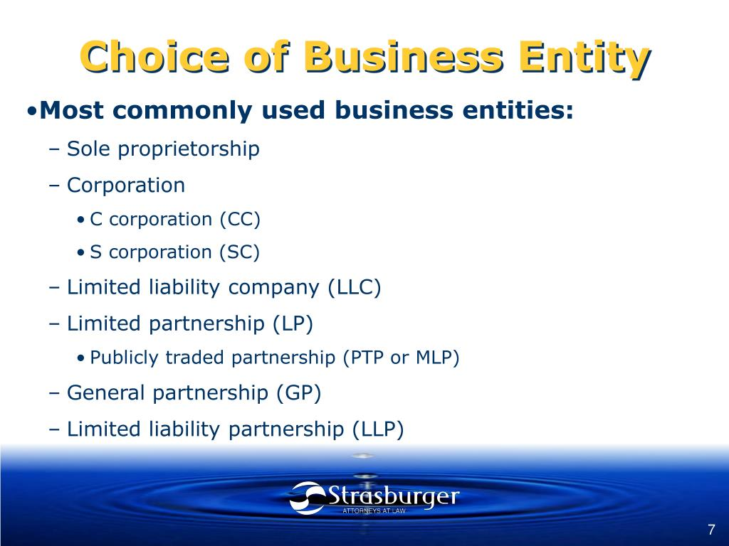 Choice of Business Entity