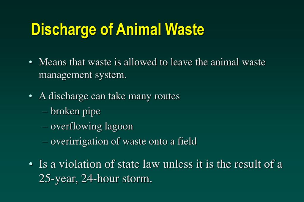 Discharge of Animal Waste