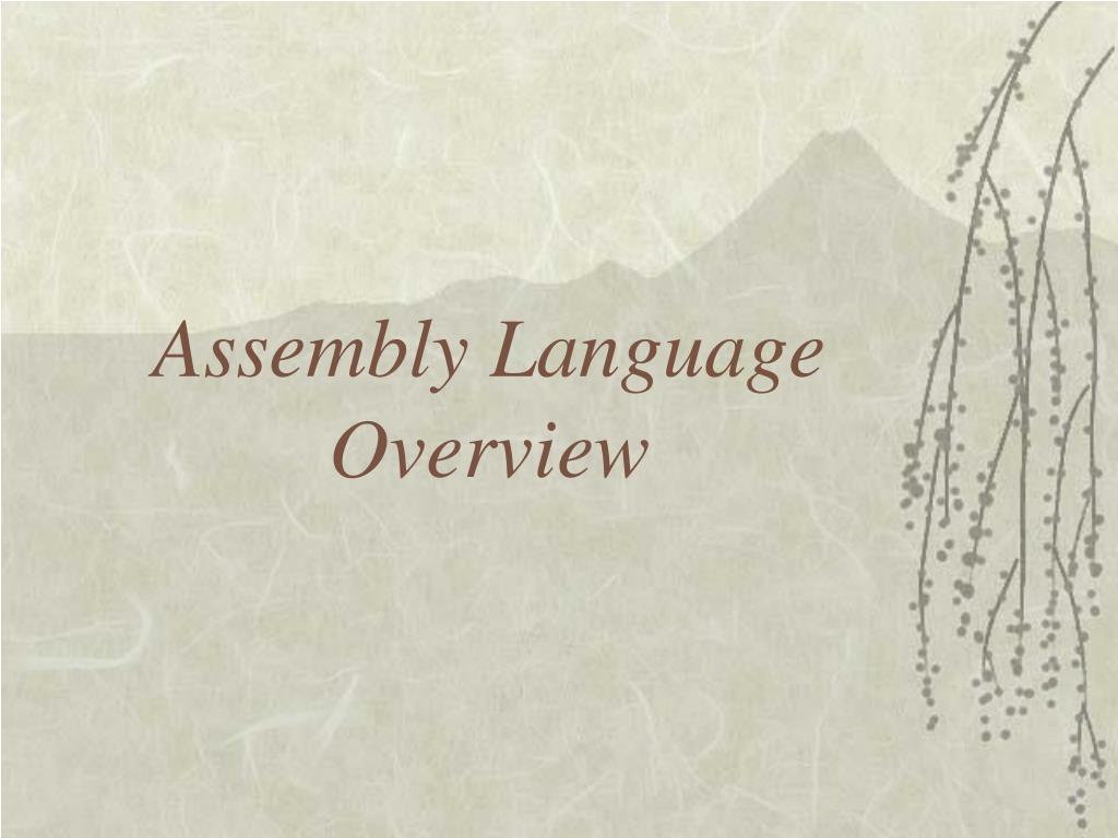 Assembly Language Overview