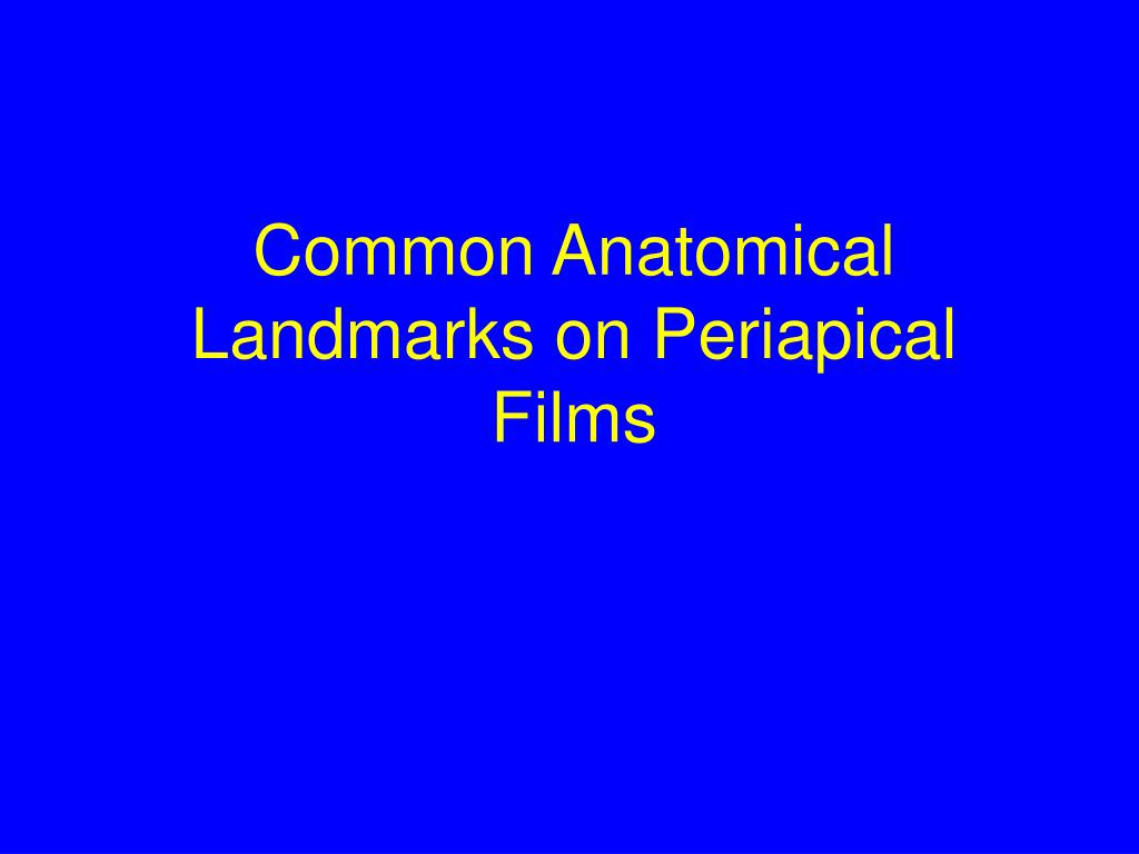 Common Anatomical Landmarks on Periapical Films
