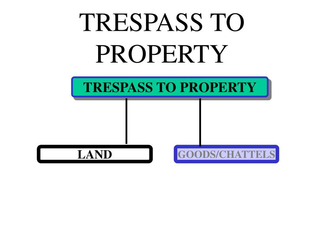 TRESPASS TO PROPERTY