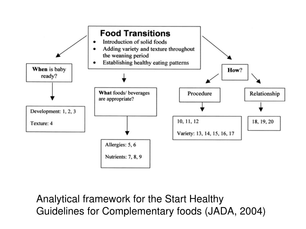 Analytical framework for the Start Healthy Guidelines for Complementary foods (JADA, 2004)