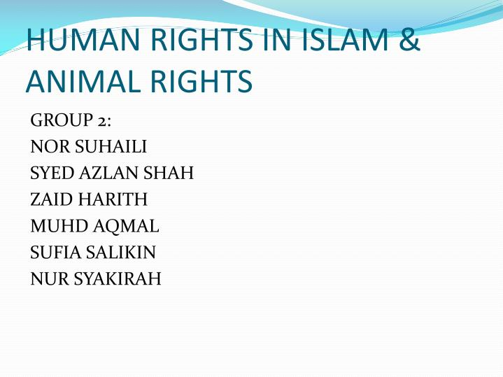 human rights in islam animal rights n.